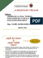 Origen y evolución de las células