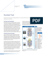 Nuclear Fuel Yacout