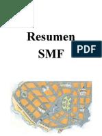 Resumen SMF