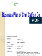 Presentation of Business Plan,