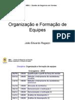 Organização e Formação de Equipes 1