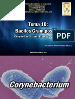 TEMA 10 Bacilos Gram Positivo