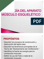 3. FISIOLOGÍA DE APARATO MÚSCULO ESQUELÉTICO