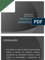 Partculas Magnticas I