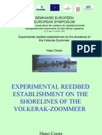Experimental reedbed establishment on the shorelines of the Volkerak-Zoommeer