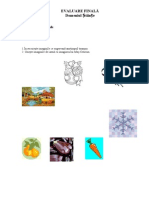 0_evaluaresumativ[1]