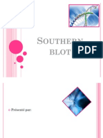 Southern blot exposé1