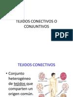 Tejidos Conectivos o Conjuntivos