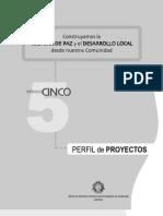 MODULO 5 Perfil proyectos