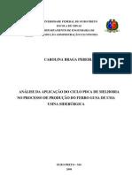 Monografia Carolina Braga Perreira