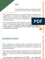 Deteccion e Identificacion de Proteinas Por Cluster