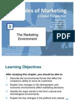 Principles of Marketing - Marketing Environment