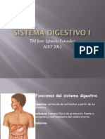 Clase 18. Sistema Digestivo I