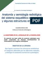 3. Anatomía y semiología radiológica del sistema esquelético en general y algunas estructuras en especial.