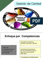 File 4e09677a96 376 CompetenciasRRHH (1)