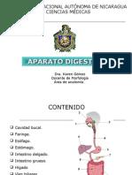 DIGESTIVO_K