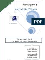 Audit fiscal Cas d'une société de distribution