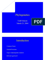 prezentare filogenie