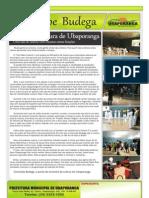 Informativo - Junho de 2011 (Página 16)