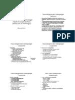 A degenerativ agyi betegségek képalkotó diagnosztikája