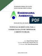 Potencial do Bioetanol para a Comercialização de Créditos de Carbono no Brasil
