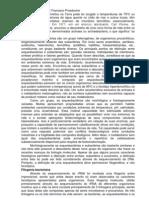 Arqueobacterias Por Francisco Prosdocimi(1)