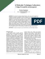 ClendeningBiosceneDrosophilav28-1p3-19