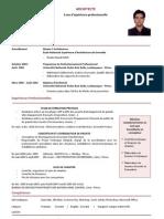 CV Daniel SANTISTEBAN ARCHITECTE en Français