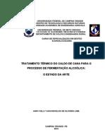 Tratamento térmico do caldo de cana para o processo de fermentação alcoólica PDF