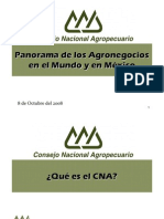SP2009 PanoramaAgronegocios CNA JCCG