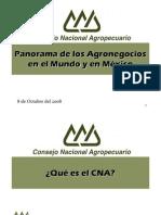 SP2009 PanoramaAgronegocios CNA JCCG