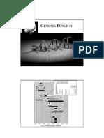 Genoma Fúngico MicroGen2011