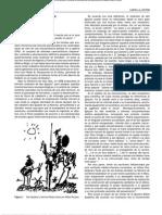 Sindrome de Don Quijote..Elsevier 2011