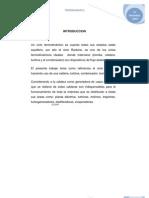 EFICIENCIATERMICA3[2]