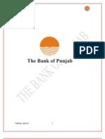 Hasham Bank Punjab
