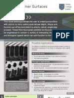 Porous Polymer Surfaces