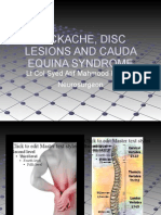 Backache, Disc Lesions and Cauda Equina Syndrome