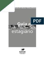 GuiadoEstagiario