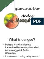 Dengu Awareness Month Lecture 2006