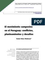 Movimientos Campesinos en El Paraguay. 3
