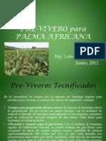 Pre-Vivero Para Palma Africana Mk