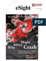 HindeSight Investor Letter April 2011 Silver Criticality Why Silver Might Crash
