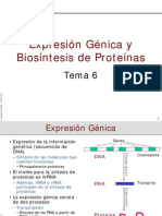 Biosíntesis de Proteínas