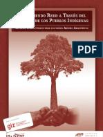 Entendiendo REDD a través del derecho de los Pueblos Indigenas