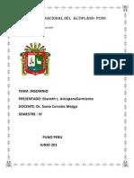 Univerdidad Nacional Del Altiplano Insomio