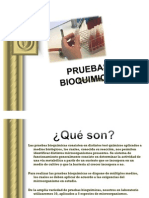 pruebasbioquimicas-100526093311-phpapp02