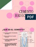 Expo de Cemento Radicular