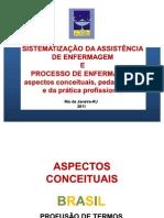 SAE e Processo de Enfermagem Rio de Janeiro - 2011