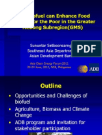 Sununtar Setboonsarng - How Biofuel Can Enhance Food Security for the Poor