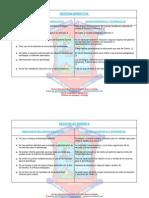 Debilidades Del c.e y Causas 2010